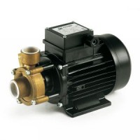 Industrial Peripheral Water Pump